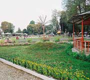 Nightingale Park at Darjeeling